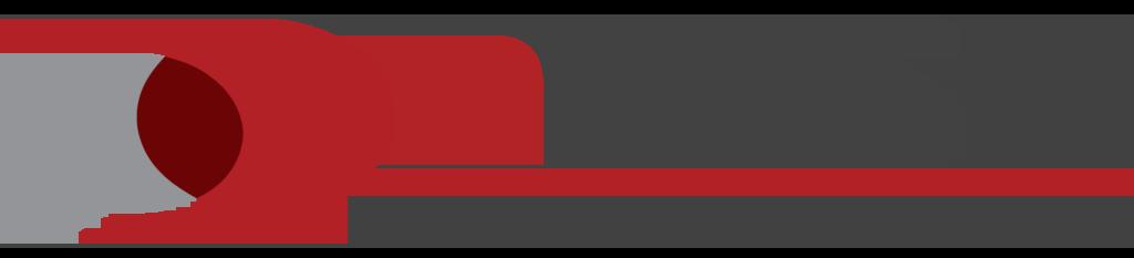 nWise logotyp